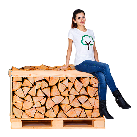 Birch Full Crate Kiln Dried Logs